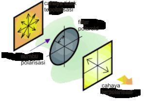 Gambar 2. Skema polarisasi selektif menggunakan filter polaroid. Hanya cahaya dengan orientasi sejajar sumbu polarisasi polaroid yang diteruskan.